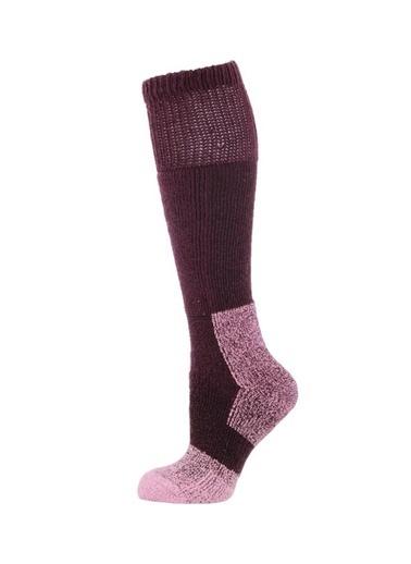 Panthzer  Nature Extreme Cold Socks Kadın Çorap Mor Mor